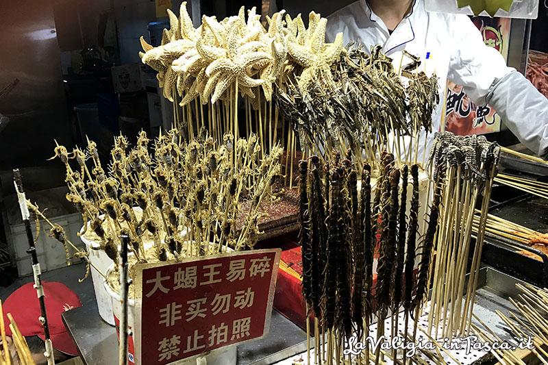 spiedini insetti Beijing