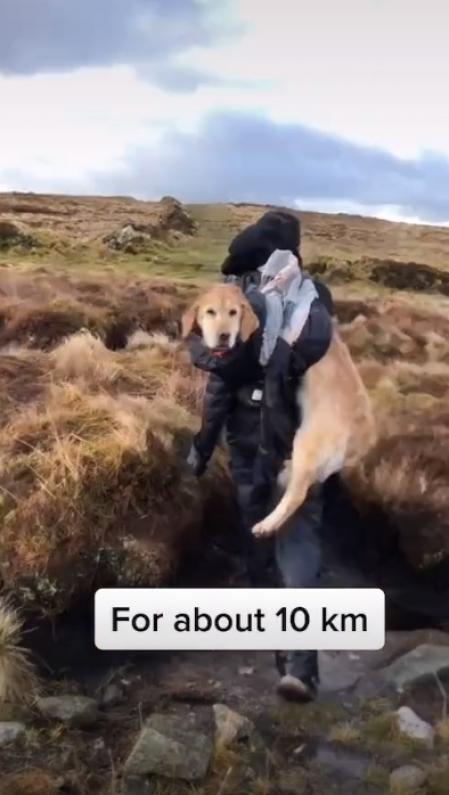 Le couple confirme dans la vidéo qu'ils ont marché environ 10 kilomètres jusqu'à l'abri.
