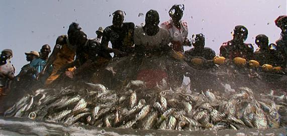 'The end of the line' . documental sobre el efecto de la sobrepesca premiado en Sundance