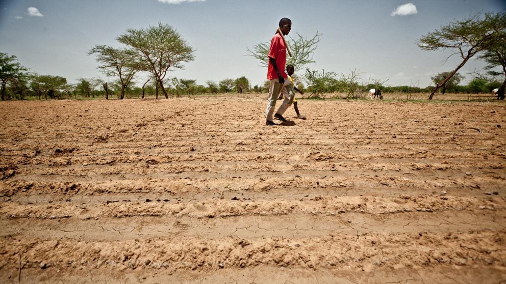 El cambio climático provocará 250 millones de refugiados
