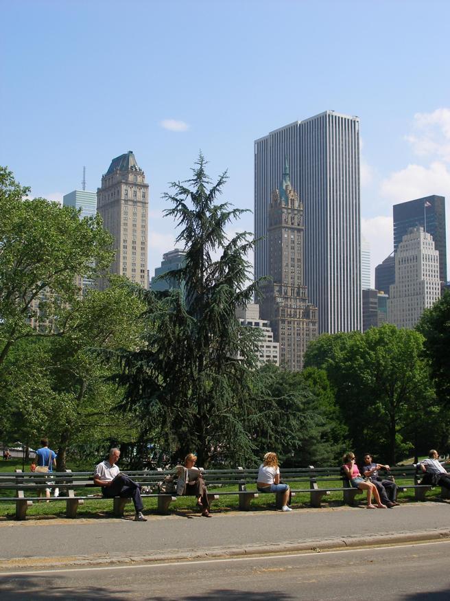 Vista del central Park de Nueva York