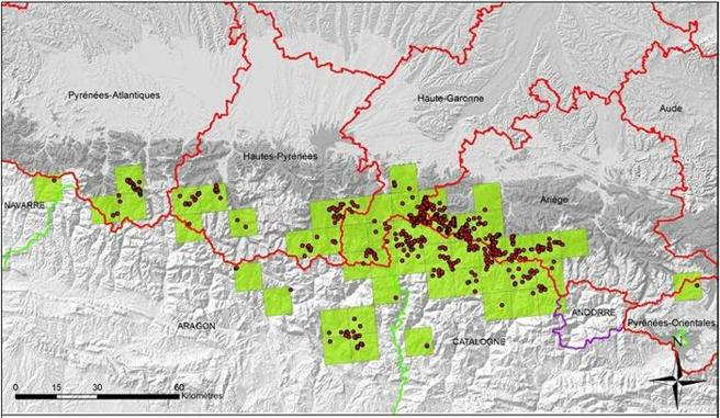 Mapa de distribución de osos en los Pirineos