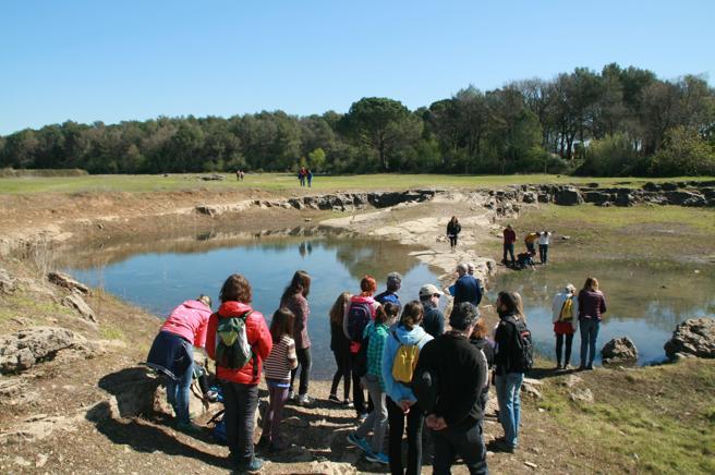 Visita guiada al estanque de Espolla organizada por Limnos en 2017