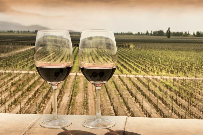 Mendoza es la cuna del vino en Argentina