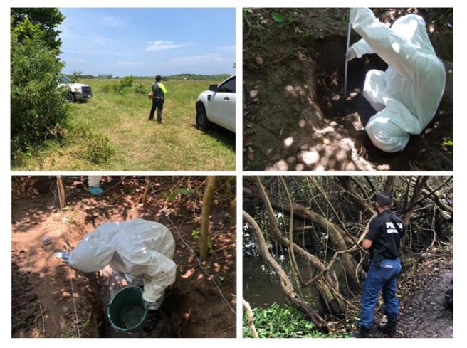 Combo de fotografías cedidas por la Fiscalía General del Estado de Veracruz  que muestra a expertos forenses mientras realizan labores en la zona donde se ha encontrado una fosa clandestina, en el estado de Veracruz