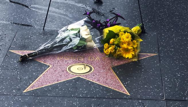 The star of Doris Day on the Hollywood Walk of Fame