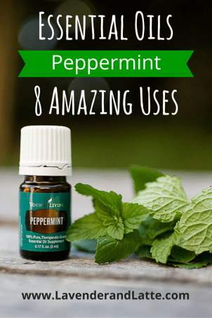 Peppermint Essential Oil - Lavender and Latte