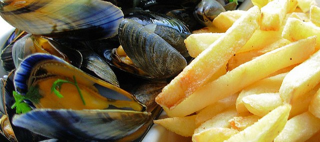 Fish is the Dish, Fish Fanatics and How to Cook Mussels without Fear!