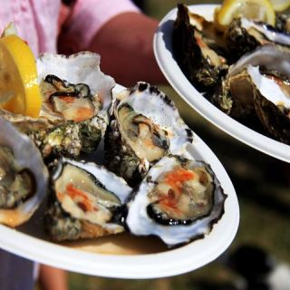 The Rock Oyster Festival ~ A Mid-Summer Celebration of Food, Music and Art
