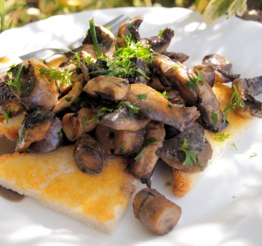 Creamy Garlic Mushrooms on Toast (190 Calories)