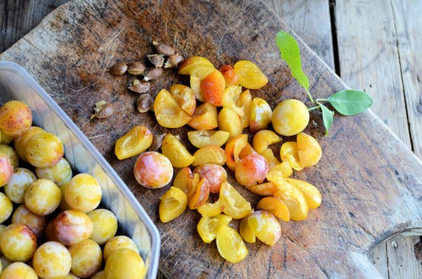 The Old Mirabelle Plum Tree: Spiced Mirabelle Plum Galette Recipe