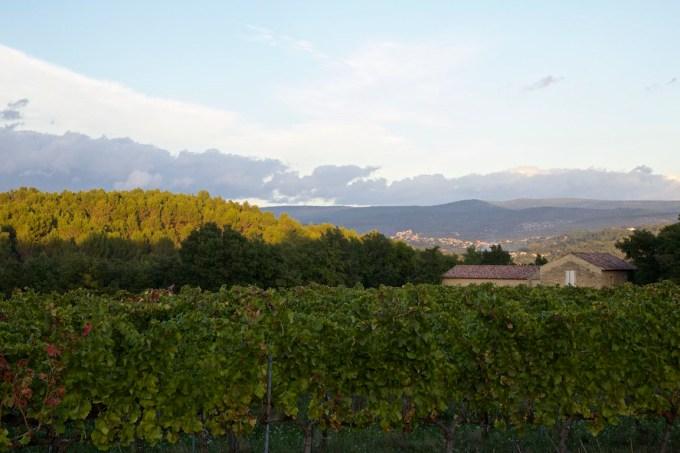 Malemort-du-Comtat, South of France