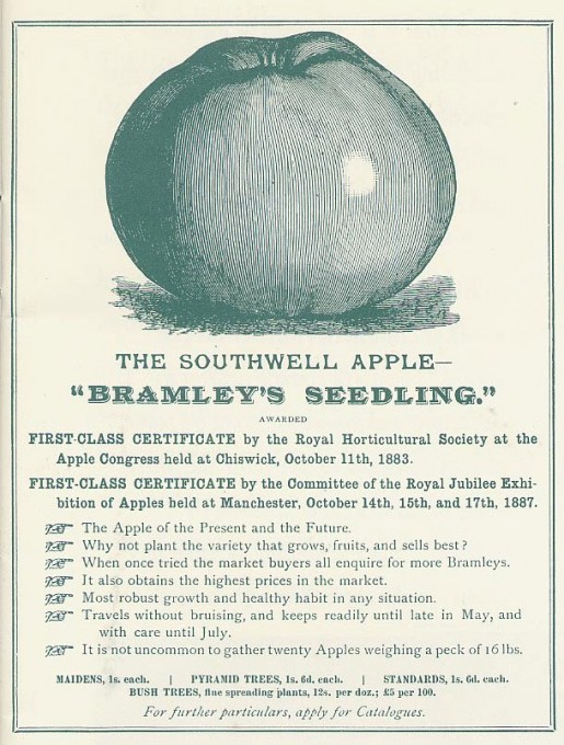 1889 and 1893 Bramley Seedling was awarded a First Class Certificate by the Committee of the Nottingham Botanical Society and at the Gardening and Forestry Exhibition in September 1893. The Royal Horticultural Society's Apple Show awarded further First Class Certificates to the Bramley in August 1893.
