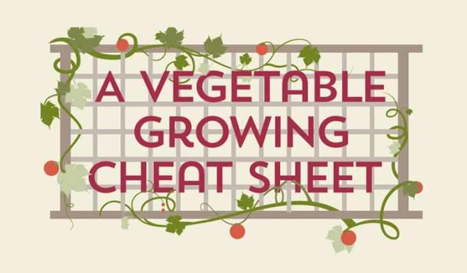 Vegetable Planting Cheat Sheet