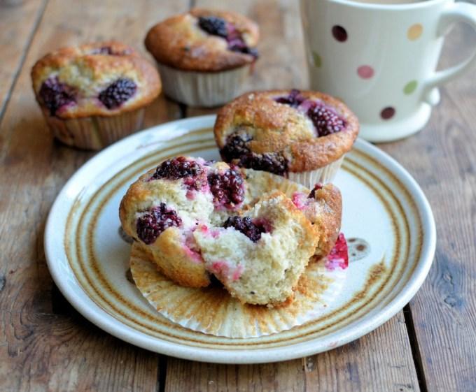Blackberry Fairy Cake Buns Muffins