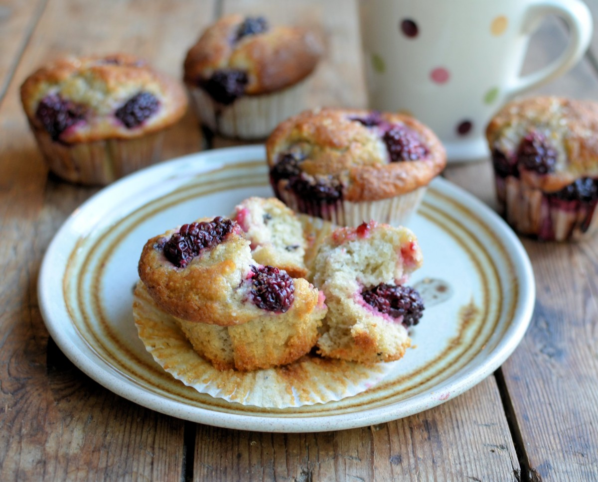Blackberry Fairy Cake Buns Muffins Lavender And Lovage