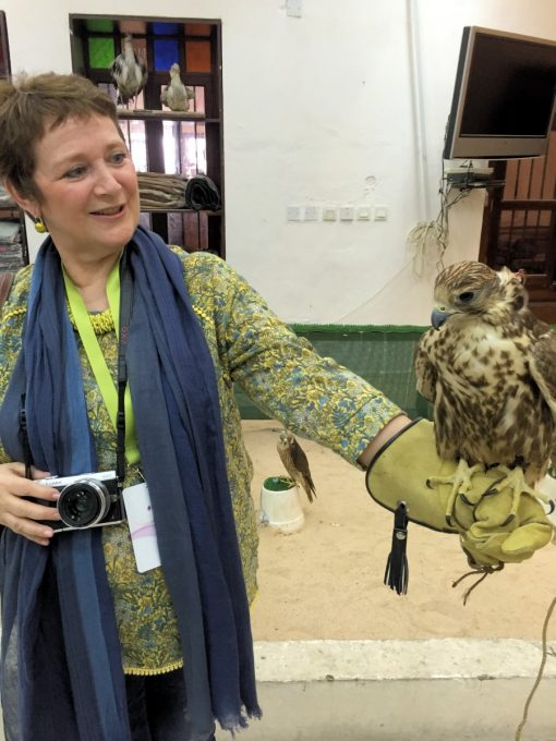 Falcons in Falcon Souq Doha Qatar