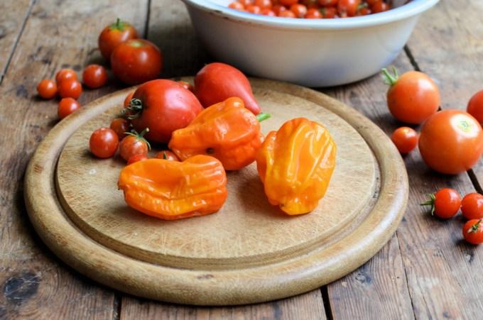 Home-grown sweet peppers