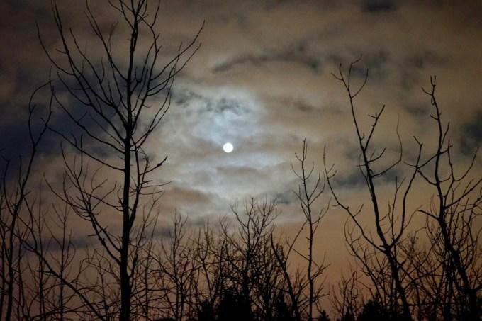 A Snow Moon