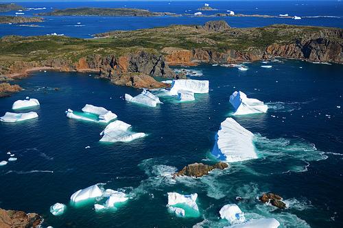 Icebergs at Twillingate, NFL