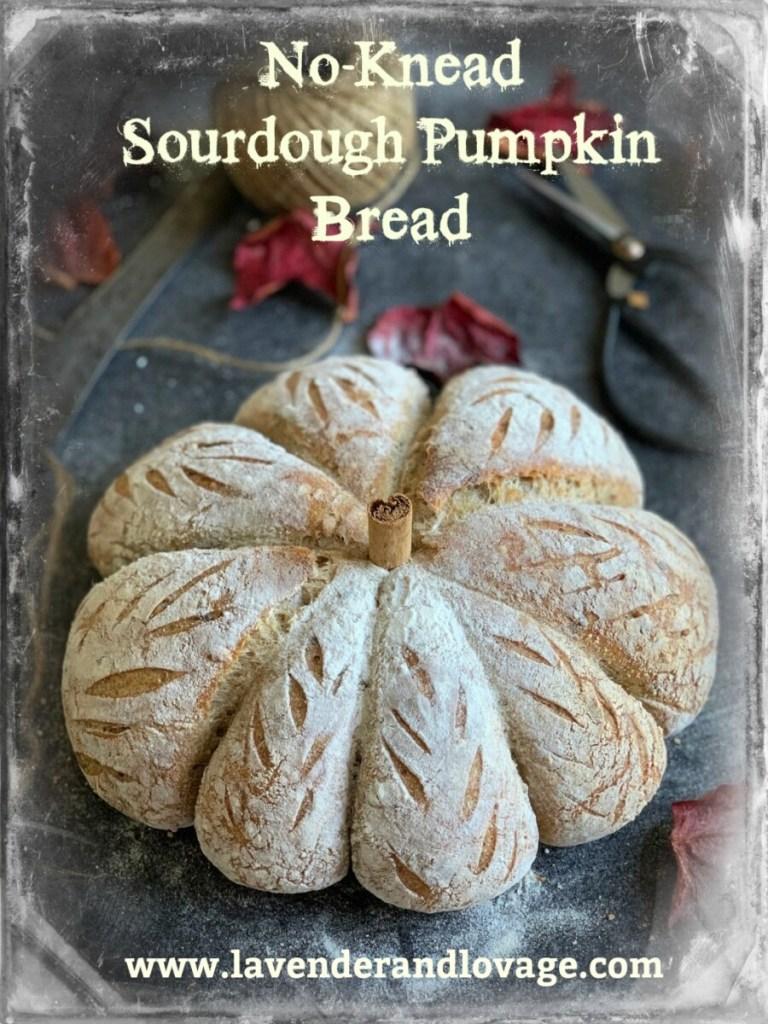 No-Knead Sourdough Pumpkin Bread