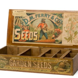Giveaway: Win £50 worth of Seeds of your choice from Seed Parade