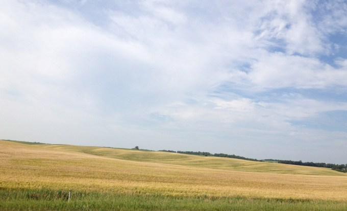 The Prairies