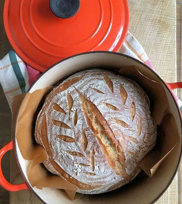 I forgot to share my sourdough loaf from yesterday....baked in a new (old) Le Creuset cocotte @lecreusetuk after 14hrs in a very cold pantry - using the cold oven method, baked for 1hr with the lid on. Perfect for dipping and dunking on soup as well as toasted for breakfast.