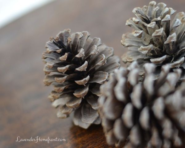 How to Bleach Pinecones for Decoration