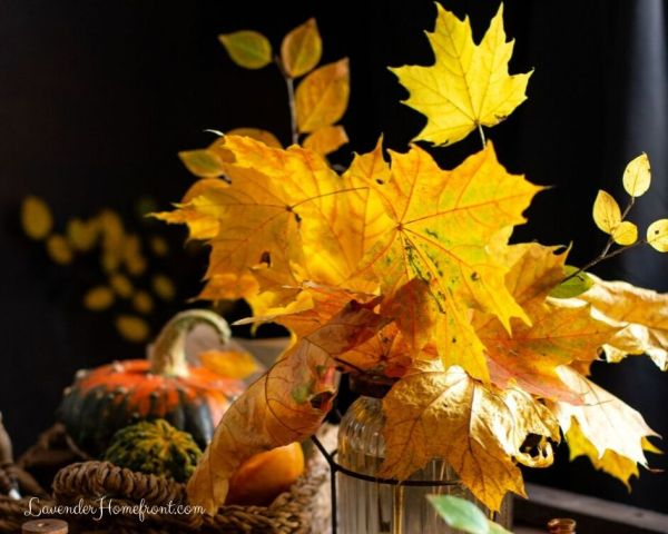 How to use leaves to decorate for fall