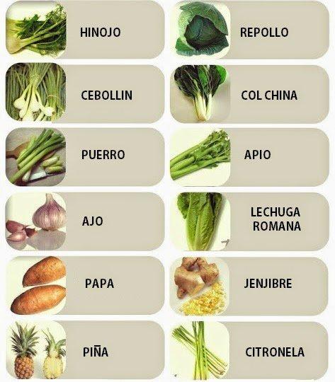 los 11 vegetales que puedes crecer de nuevo
