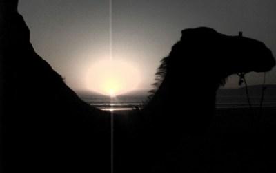 Coucher de soleil au creux d'un chameau