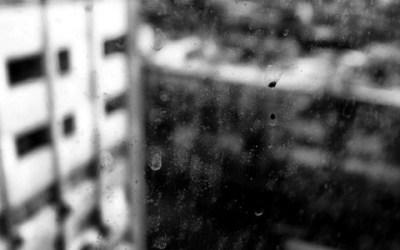 A travers la fenêtre…