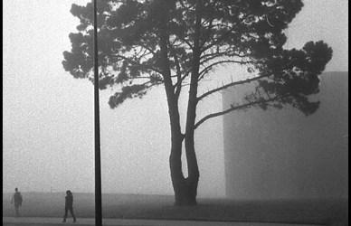 Brest …brouillard