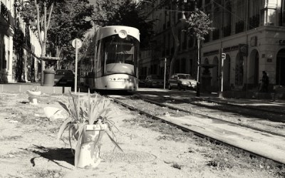 Tram …