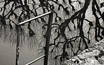 les longs reflets d'hiver
