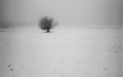 Passer l'hiver