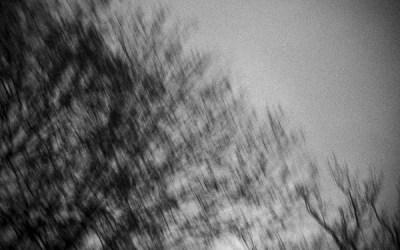 Images d'un jour (23)