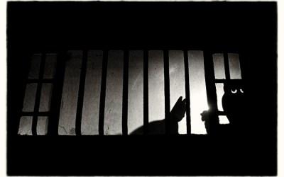 Théatre de nuit…