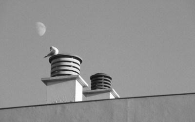Regard sur la lune