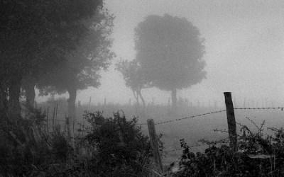 Brouillard dans le Cantal