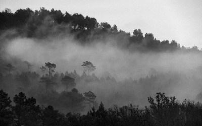 Petit matin dans le Luberon