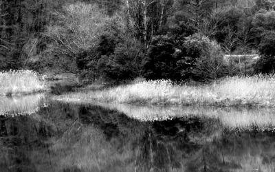 Miroir d'eau #1