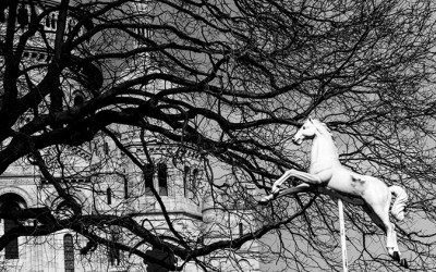 Il faut un Sacré Coeur pour galoper dans les arbres…