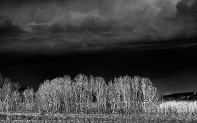 Et soudain le ciel s'obscurcit …