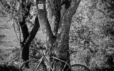 Actu. Tour de France, la journée de repos