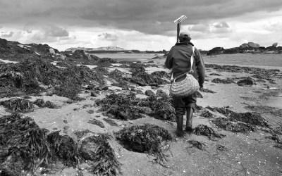 Le jardinier de la mer