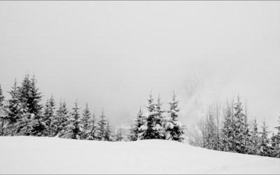 Frise hivernale
