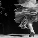 Flamenco 2021 2