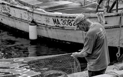 Le pêcheur aux filets